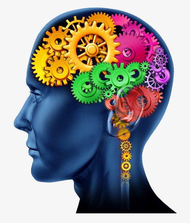 brain with wheels